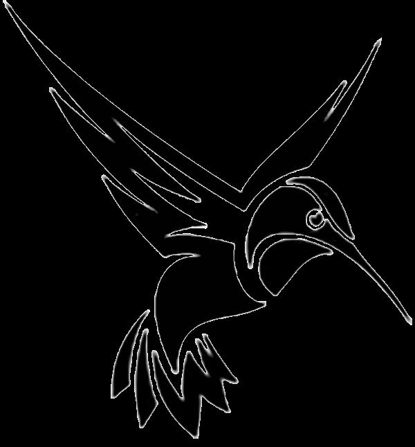 Logo noir colibri soins à annecy
